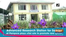 Advanced Research Station for Saffron at Pampore plays vital role to promote rare spices