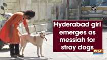 Hyderabad girl emerges as messiah for stray dogs