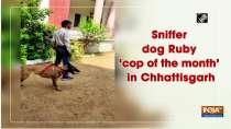 Sniffer dog Ruby