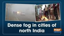 Dense fog in cities of north India