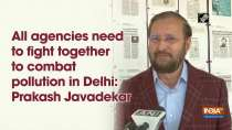 All agencies need to fight together to combat pollution in Delhi: Prakash Javadekar