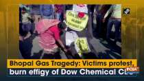Bhopal Gas Tragedy: Victims protest, burn effigy of Dow Chemical CEO