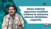Union Cabinet approves modified scheme to enhance ethanol distillation capacity
