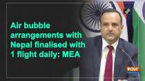 Air bubble arrangements with Nepal finalised with 1 flight daily: MEA