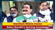Narottam Mishra mocks Rahul Gandhi