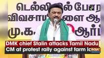 DMK chief Stalin attacks Tamil Nadu CM at protest rally against farm laws