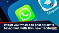 Import your WhatsApp chat history to Telegram with this new feature