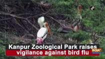 Kanpur Zoological Park raises vigilance against bird flu