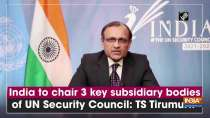 India to chair 3 key subsidiary bodies of UN Security Council: TS Tirumurti