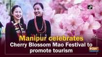 Manipur celebrates Cherry Blossom Mao Festival to promote tourism