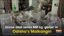 Excise dept seizes 800 kg