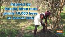 Inspired by Manjhi, Bihar man plants 10,000 trees on barren land