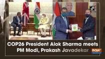 COP26 President Alok Sharma meets PM Modi, Prakash Javadekar