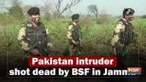 BSF neutralized intruder along Indo-Pak border in Jammu: IG Jamwal