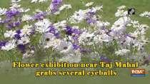 Flower exhibition near Taj Mahal grabs several eyeballs