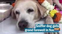 Watch: Sniffer dog gets grand farewell in Nashik