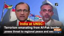 India at UNSC: Terrorism emanating from Af-Pak border poses threat to regional peace and security
