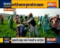 Farmers destroy their crops after BKU leader Rakesh Tikait