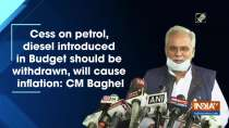 Cess on petrol, diesel introduced in Budget should be withdrawn, will cause inflation: CM Baghel