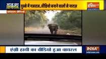 Aaj Ka Viral: Watch Elephant charges towards jeep after tourist says Kuch Nahi Hoga