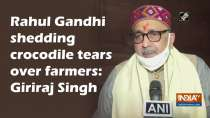 Rahul Gandhi shedding crocodile tears over farmers: Giriraj Singh