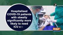 Hospitalised COVID-19 patients with obesity significantly more likely to need ICU care