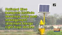 National Rice Research Institute develops solar pest management