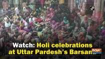 Watch: Holi celebrations at Uttar Pardesh