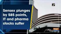 Sensex plunges by 585 points, IT and pharma stocks suffer