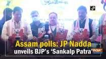 Assam polls: JP Nadda unveils BJP