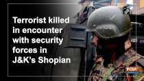 Terrorist killed in encounter with security forces in JandK