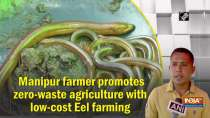 Manipur farmer promotes zero-waste agriculture with low-cost Eel farming