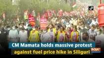 CM Mamata holds massive protest against fuel price hike in Siliguri
