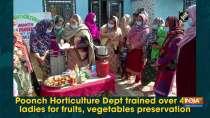 Poonch Horticulture Dept trained over 400 ladies for fruits, vegetables preservation