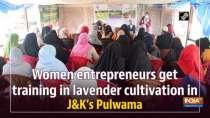 Women entrepreneurs get training in lavender cultivation in J&K