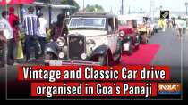 Vintage and Classic Car drive organised in Goa