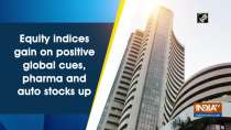 Equity indices gain on positive global cues, pharma and auto stocks up