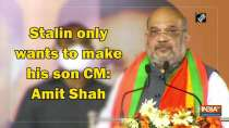 Stalin only wants to make his son CM: Amit Shah