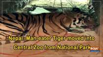 Nepal: Man-eater Tiger moved into Central Zoo from National Park