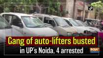 Gang of auto-lifters busted in UP