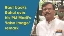 Raut backs Rahul over his PM Modi