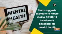Study suggests exposure to nature during COVID-19 lockdown is beneficial for mental health