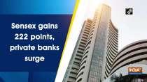 Sensex gains 222 points, private banks surge