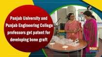 Panjab University and Punjab Engineering College professors get patent for developing bone graft