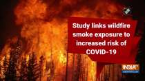 Study links wildfire smoke exposure to increased risk of COVID-19