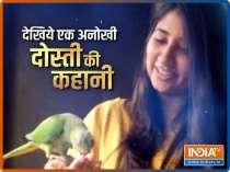 Pune girl befriends over a dozen parrots during Covid lockdown