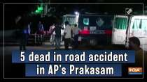 5 dead in road accident in AP
