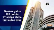 Sensex gains 226 points, IT scrips shine but autos drag