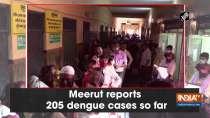 Meerut reports 205 dengue cases so far