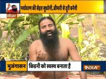 Tulsi is effective in headache, know from Swami Ramdev which plants are beneficial for health